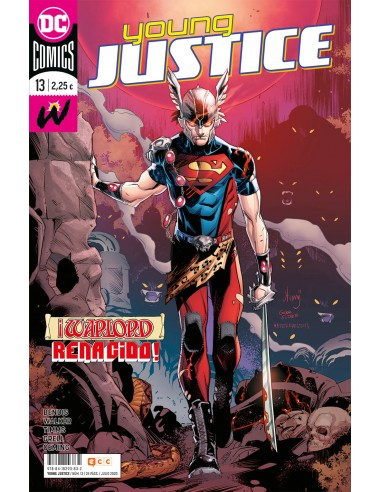 YOUNG JUSTICE 13